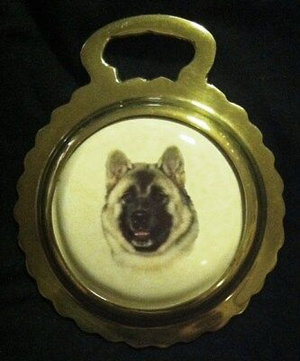 NEW DOG AKITA INU Ceramic Harness Horse Brass AKITA DOG Lover! WOW YOUR WALLS!