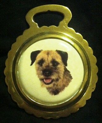 NEW DOG BORDER TERRIER Ceramic Horse Brass BORDER TERRIER LOVER! WOW YOUR WALLS!