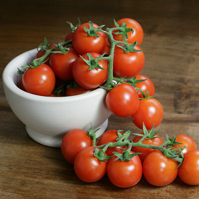 Vegetable - Tomato - Sweet n Neat Red - 10 Seeds