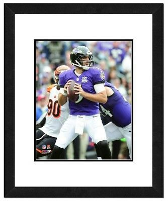 Photo File Joe Flacco Baltimore Ravens Framed NFL Player Action Photography MD