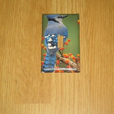 Classic Blue Jay Bluejay Wild Bird Light Switch Cover Plate #5