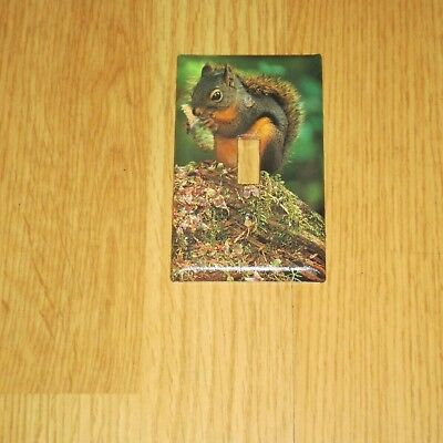 CLASSIC RED SQUIRREL Animal Light Switch Cover Plate