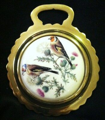 NEW BIRD COLORFUL GOLDFINCHES Ceramic Horse Brass BIRD LOVER! WOW YOUR WALLS!