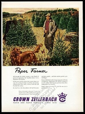 1954 Irish Setter and paper farmer art Crown Zellerbach vintage print ad