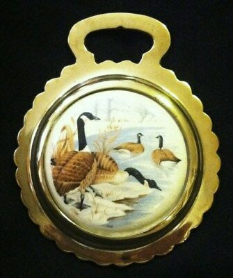 NEW BIRD CANADIAN GEESE Ceramic Harness Horse Brass BIRD LOVER! WOW YOUR WALLS!!