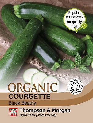 Thompson & Morgan - Courgette Black Beauty (Organic) - 15 Seeds