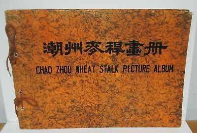 Vintage CHAO ZHOU WHEAT STALK PICTURE ALBUM