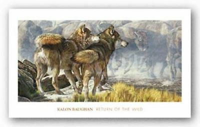 Watchful Eyes by Kalon Baughan Poster Tiger Cat 26x20 WILDLIFE ART PRINT