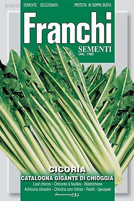 Franchi Seeds of Italy - Chicory - Gigante Di Chioggia - Seeds
