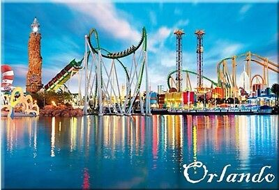 Orlando Florida Photo Fridge Refrigerator Magnet Travel Souvenir (123)