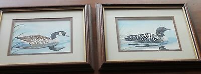 Susan Peifer, Mallard Ducks Two Framed Watercolors SIGNED 9 1/2 X 11 1/2 inches