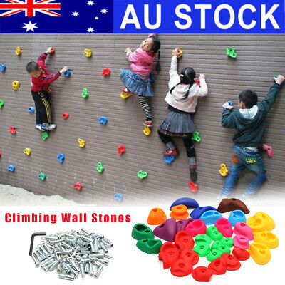 AU 32Pc Children Climbing Wall Stones Holds Hand Feet Starter Rock Holder+Screws