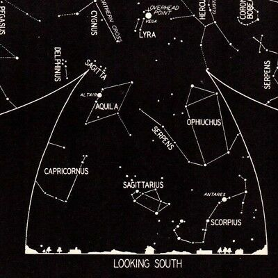 1942 August Sky STAR & CONSTELLATION Map ASTRONOMY Print Astrology Signs 4323