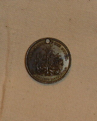 Holed Wealth of the South civil war token