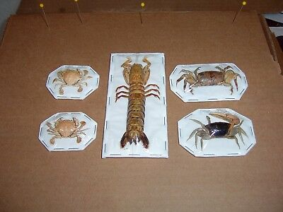 CRAB Taxidermy and Mantis 4 Asian Species Display  For Educational Aids