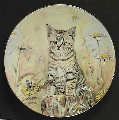 Royal Worcester KITTEN CLASSICS Tigers Fancy Plate 1985