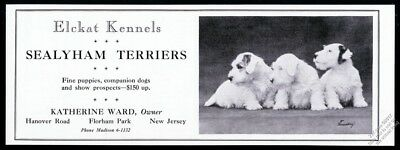 1932 Sealyham Terrier photo Elckat Kennels breeder vintage print ad