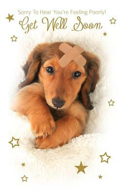 cute puppy sorry to hear youre feeling poorly get well soon greeting