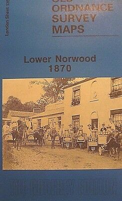 OLD ORDNANCE SURVEY DETAILED MAPS LOWER NORWOOD LONDON  1870 SHEET 136 New