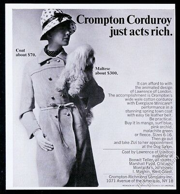 1966 Maltese dog and woman photo Crompton Corduroy coat vintage fashion print ad