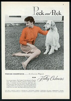 1954 English Setter champion dog photo Peck & Peck sweater vintage print ad