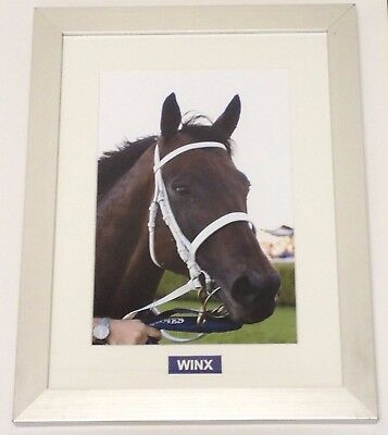 Framed Horse Racing Champion Wonder Mare Winx!!!