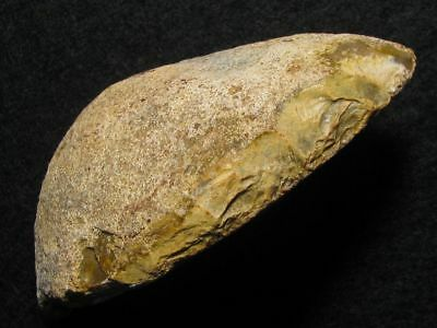 80.000Y.O: GREAT SCRAPER 97mms NEANDERTHAL MAN STONE AGE PALEOLITHIC MOUSTERIAN