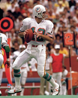 Bob Griese Miami Dolphins Classic c.1977 NFL Football Premium POSTER Print