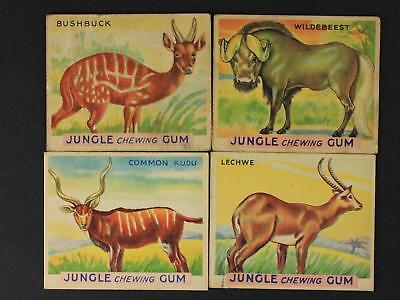 LOT of FOUR 1933 JUNGLE CHEWING GUM ANIMALTRADE CARDS~