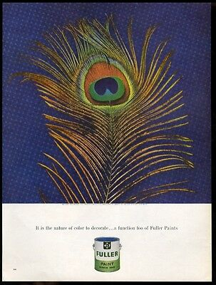 1963 peacock feather photo Fuller house paint vintage print ad