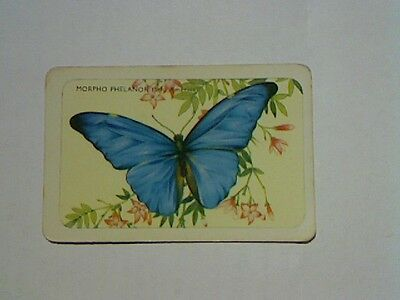 1 Single Swap/Playing Card - Woolworths Blank Back Named Butterfly