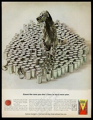 1964 English Setter photo Gaines-Burgers dog food vintage print ad