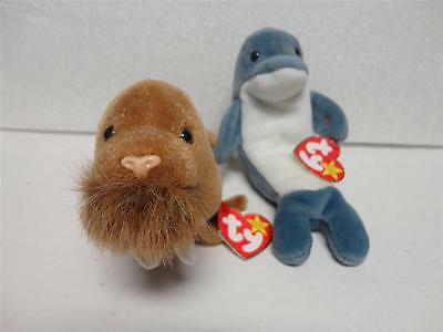 adaeb477e7d TY Beanie Baby Echo the Dolphin 1996 and Paul the Walrus 1999 with Tags Lot  of
