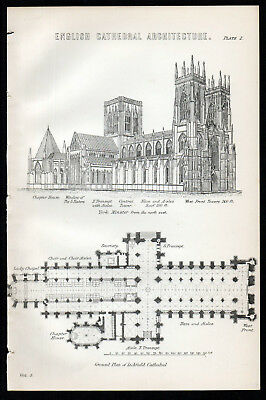 ENGLISH CATHEDRAL ARCHITECTURE 1883 York Minster Lichfield ANTIQUE LITHOGRAPH #2