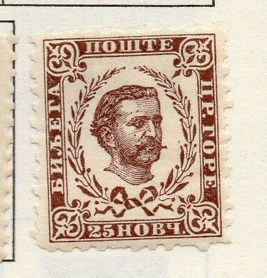 Montenegro 1874-96 Early Issue Fine Mint Hinged 25n. 182240