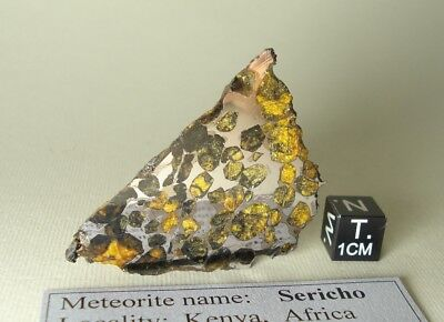 meteorite pallasite SERICHO, (Habaswein) from Kenya, complete endpiece 41,1 g