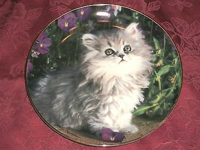 Franklin Mint Porcelain Plate Purrfection! Nancy Matthews Gray Persian Kitten