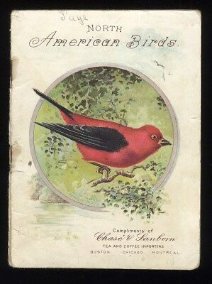 Chase & Sanborn Coffee NORTH AMERICAN BIRDS 1905 Advertising Booklet