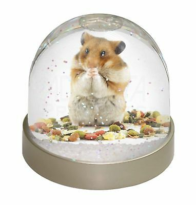 Lunch Box Hamster Photo Snow Globe Waterball Stocking Filler Gift, HAM-1GL