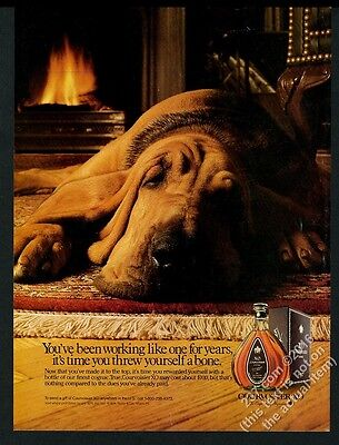 1988 Bloodhound photo by fireplace Courvoisier XO cognac vintage print ad