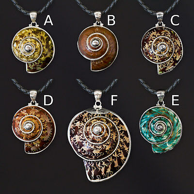 Necklace Pendant 925 Silver turban snail Ladies Natural Neck Shell Jewelry