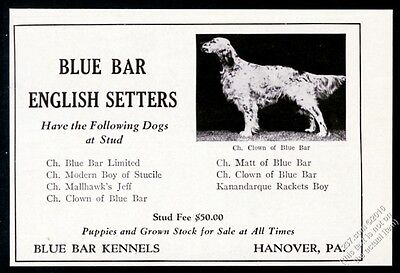 1940 English Setter photo Blue Bar chmapion dog breeder vintage print ad