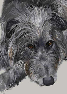 5x7 Note Card w/Envelope - Scottish Deerhound