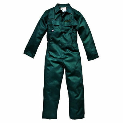 DICKIES Proban Coverall Overall Workwear in Green