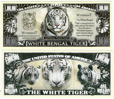 Dollar  WHITE BENGAL TIGER