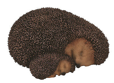 Vivid Arts - REAL LIFE WOODLAND ANIMALS - Mother & Baby Hedgehog