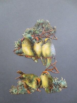 2 VICTORIAN SCRAP Diecut Embossed Goldfinch Birds in Fir Tree Original Scraps