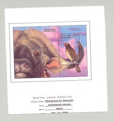 Togo #1727 Birds, African Buffalo 1v S/S Imperf Chromalin Proof