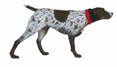 German Shorthaired Pointer Dog Animal Theme Decor Display Prop