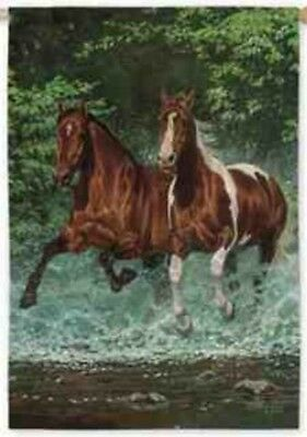 Horse Flag CASCADE RUN Horse Outdoor Garden Flag